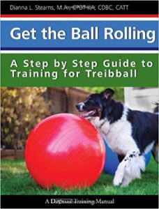 Treiball or Urban Herding training